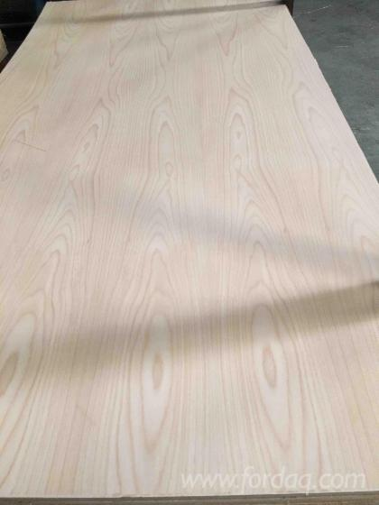 Beech-plywood--beech-veneered-plywood