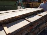 Laubholz  Blockware, Unbesäumtes Holz - Eschen - Schnittholz entrindet