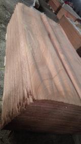 Rotary Cut Veneer - Sapele veneer, sapelli veneer, sapele plywood, sapelli plywood