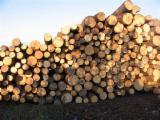 null - 10-30 cm Birch Industrial Logs