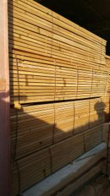 Tropical Wood  Logs - African Mahogany and Iroko logs and lumber