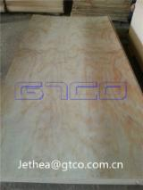 Plywood For Sale - Shuttering Pine plywood
