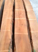 Hardwood  Unedged Timber - Flitches - Boules - Beech timber steamed 50mm ABC