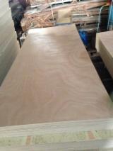 720/820/920/1020*2150mm door size okoume plywood