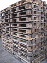 Poland Pallets And Packaging - Recycled - Used In Good State  Pallet in Poland