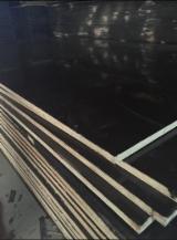 Contrachapado  - Fordaq Online mercado - Contrachapado Con Film Negro, Keruing