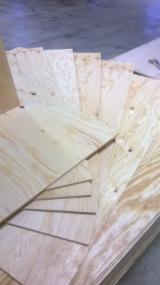 Buy or Sell Natural Plywood - Pine (Pinus Sylvestris) - Redwood C/C Natural Plywood in Latvia