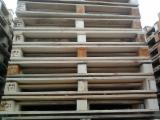 All Species Pallets And Packaging - Any  Pallet in Belarus