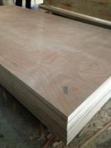 Plywood - SALE plywood for packing size 1220mm x 2440mm, material eucalyptus/styrax, from manufacture