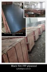 Sell And Buy Marine Plywood - Register For Free On Fordaq Network - Black Film construction plywood