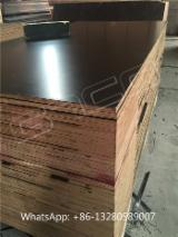 Buy or Sell Film Faced Plywood - Black film faced plywood, construction plywood, formply, shutterply