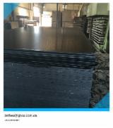Compensati - Vendo Compensato Filmato (Nero) Betulla 9-28 mm Cina