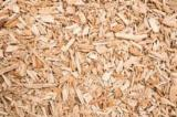 Firewood - Chips - Pellets  - Fordaq Online market - Looking for big quantities of Spruce wood chips,shavings