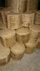 Offers - All Broad Leaved Species Wood Briquets -- mm