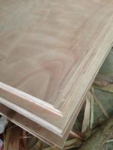 Plywood - Eucalyptus packing plywood from professional manufacturer