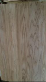 Massivholzplatten Zu Verkaufen Ukraine - Massivholzplatte, Esche