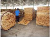 Tropical Wood  Sawn Timber - Lumber - Planed Timber - Request for FSC Rubber Lumber