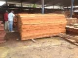 Sawn Timber importers and buyers - Doussie Lumber Demand