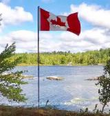 Canada Hardwood Logs - Top quality Canadian Hardwoods
