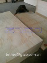 Pine veneer plywood, full pine plywood, C+/C grade pine plywood