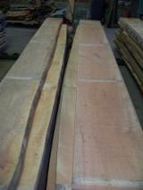 Sawn and Structural Timber - Unedged beech timber, Germany