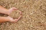 Vend Plaquettes De Bois Recyclé Tous Feuillus