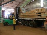 Hardwood Lumber And Sawn Timber - Pau amarelo Planks (boards) FAS (firsts and seconds) from Brazil, PARA
