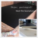 Venta Contrachapado Con Film Negro Abedul 9; 10; 12; 15; 17; 18; 21 mm China