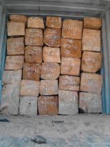 Orman ve Tomruklar - Kerestelik Tomruklar, Doussie , Vietnam
