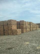 Used Wood - Beech Used Wood -- mm
