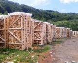 Leña, Pellets Y Residuos en venta - Venta Leña/Leños Troceados Haya Rumania
