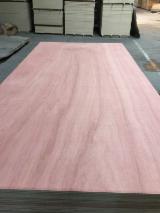 天然胶合板, 褐红娑罗双木