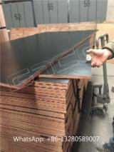 Plywood Birch Europe For Sale - Black film faced marine ply, concrete formwork plywood