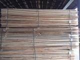 Belarus Sawn Timber - All coniferous Packaging timber from Belarus, Mogilev