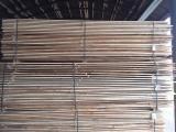 Schnittholz - Besäumtes Holz Zu Verkaufen - Nadelholz, 1000 m3 pro Monat