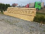 Sawn And Structural Timber Fir Spruce - 20+ mm Fresh Sawn Fir/Spruce Romania