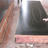 Black film faced construction plywood, concrete formwork, shutterply, marine plywood