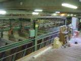 Combi sorting line 44 bins
