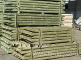 Construction Round Beams - Pine poles 1000 m3 per month