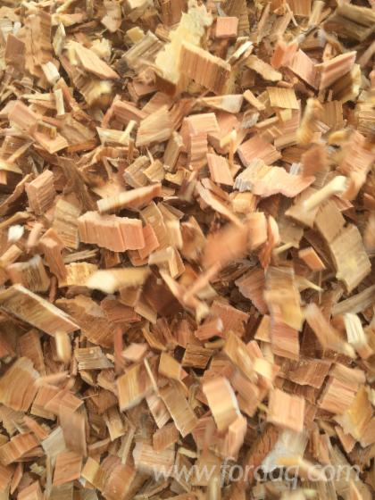 Pine eucalyptus wood chips wanted