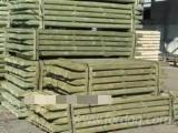 Find best timber supplies on Fordaq - MASSIV-DREV LLC - FSC Pine Poles from Belarus, 5-20 cm diameter