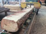 Softwood  Unedged Timber - Flitches - Boules - Pine  - Redwood Boules 30,50 mm from Ukraine, Житомирская