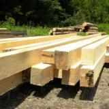Softwood  Sawn Timber - Lumber Fir Abies Alba, Pectinata For Sale Romania - 20+ mm Fresh Sawn Fir  Romania