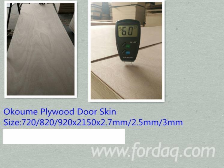 Door-Skin