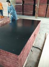 覆膜胶合板(黑膜), 214杨
