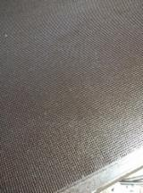 覆膜胶合板(棕膜), 桉树