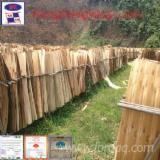 Rotary Cut Veneer For Sale - Acacia core veneer from Vietnam