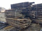 Hardwood  Unedged Timber - Flitches - Boules - Oak (European) Boules Romania