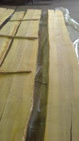 Hardwood  Unedged Timber - Flitches - Boules - PEFC/FFC European White Ash Loose from Germany