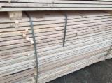 Softwood  Sawn Timber - Lumber Pine Pinus Sylvestris - Scots Pine - 20+ mm Air Dry (AD) Fir/Spruce/Pine Romania